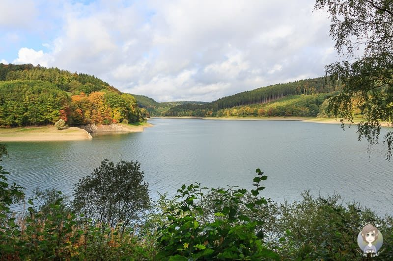 Video Reise an den Sauerland-Seen