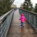 Panarbora Waldbröl: Der Baumwipfelpfad in NRW