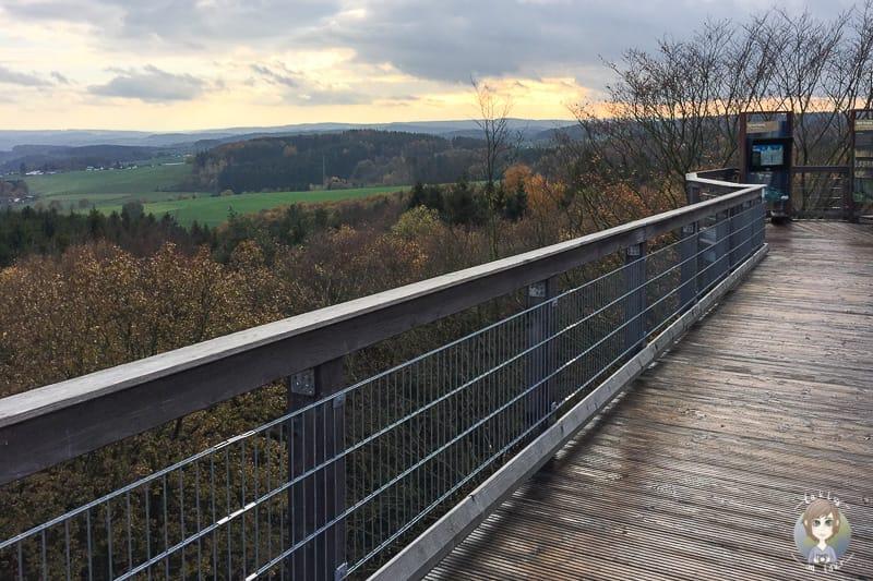 Der Panarbora Baumwipfelpfad in NRW