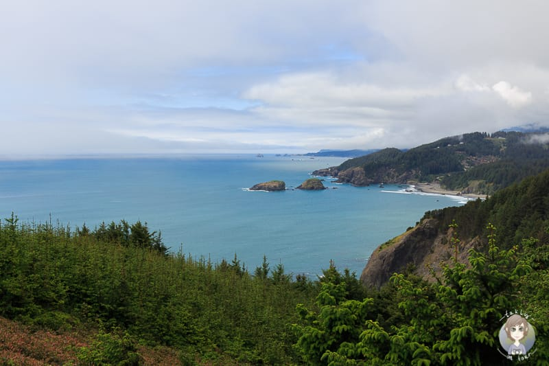 House Rock Viewpoint am Samuel Boardman Scenic Corridor
