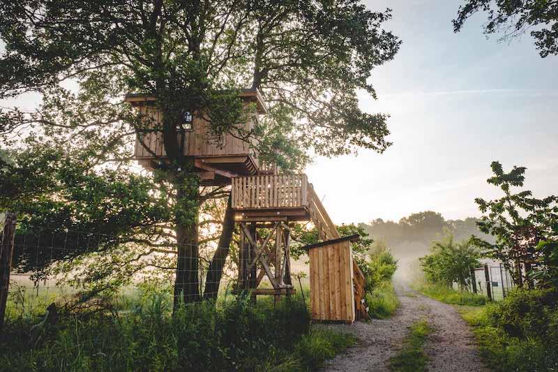 Reiseziele Deutschland ein Baumhaus in Brandenburg