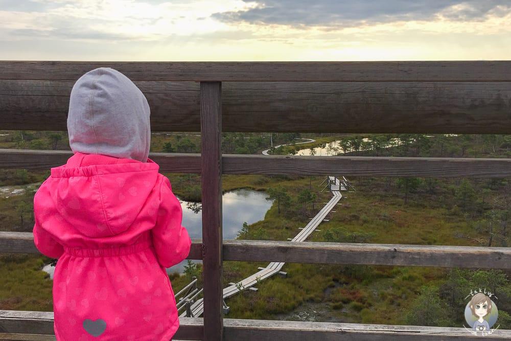 In der Natur im Baltikum mit Kind