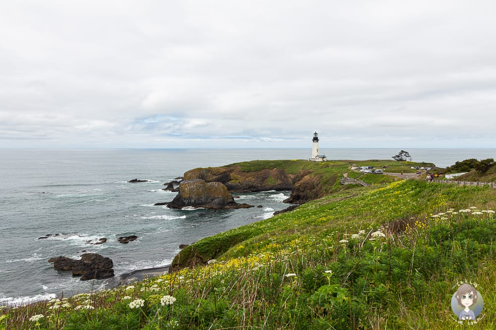Yaquina Head Area in Oregon