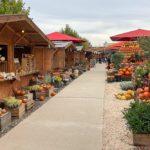Gertrudenhof Hürth: Herbstlicher Ausflug auf den Erlebnisbauernhof