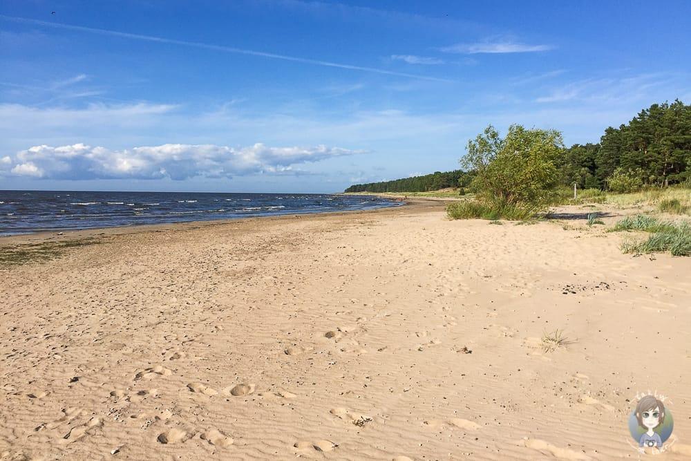 Beste Reisezeit für die baltischen Staaten Estland Lettland Litauen