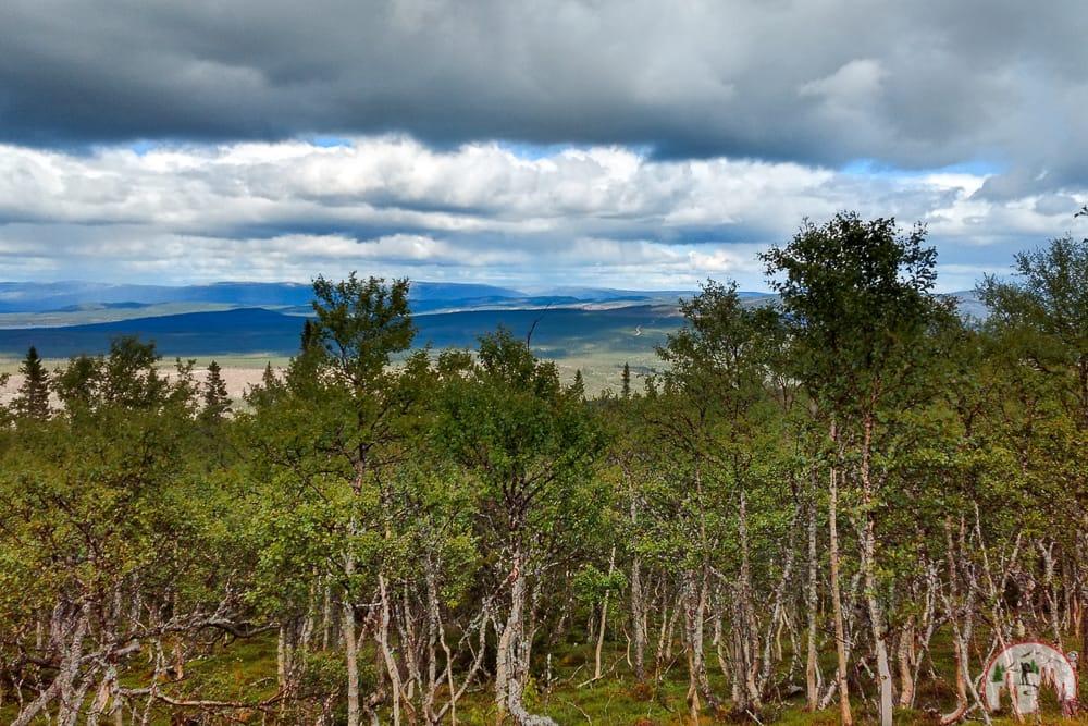Sonfjaellet Nationalpark auf Schweden Rundreise