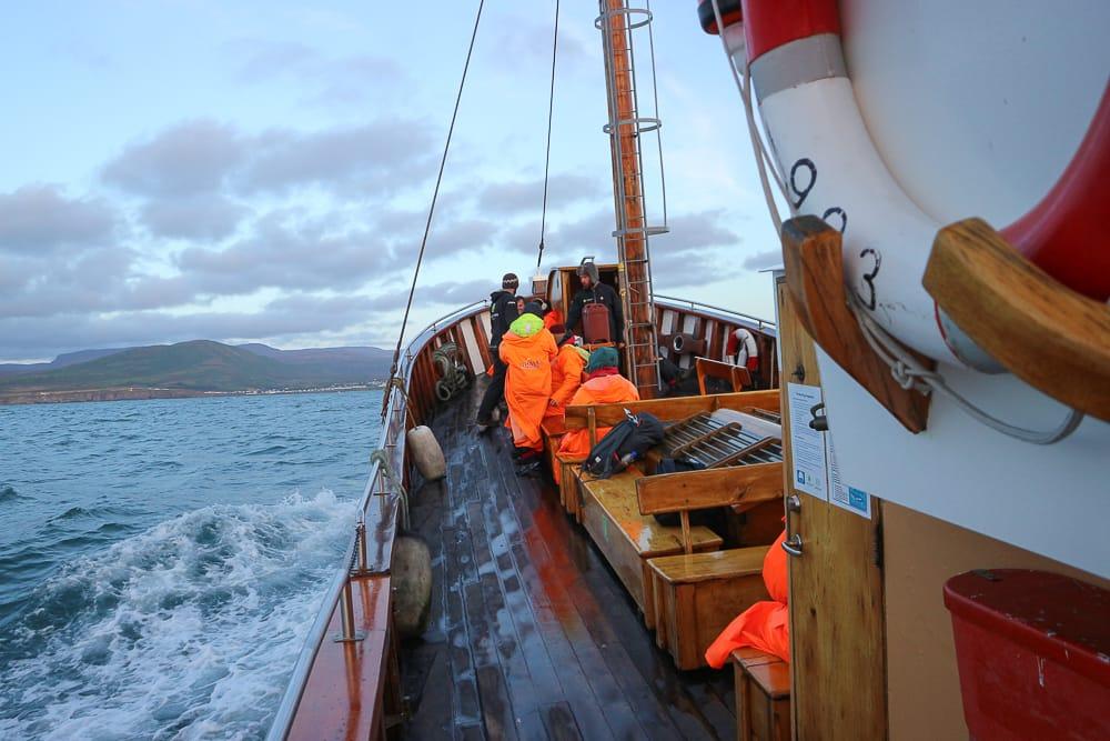 Beim Whale Watching Húsavík in Islands Norden